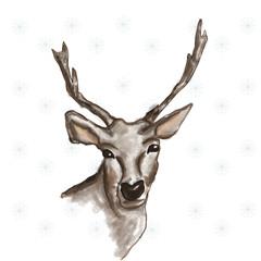 Cervo su sfondo con fiocchi di neve
