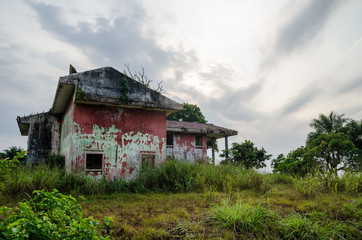 Ruined mansion surrounded by lush green with dramatic sky