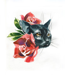 the cat is drawn in pencil,brush and watercolor