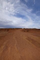 The Arizona Desert Landscape, USA