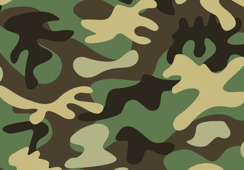 Standard Green Military Camouflage Pattern