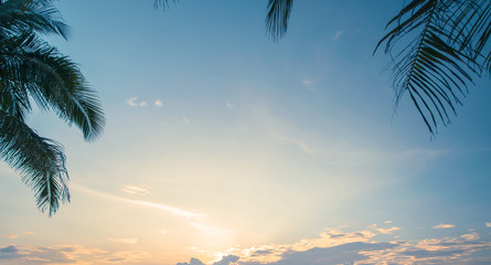 Tropical sunrise under palms