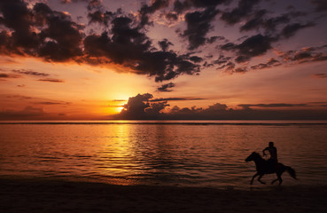 An unrecognizable human riding a horse on beach on sunset