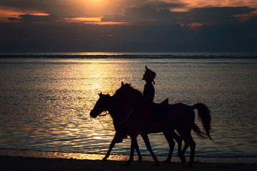 Rider with two horses at sunset on the beach