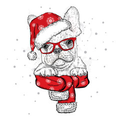 French bulldog in a Christmas hat and sunglasses. Vector illustration for a card or poster. Print on clothes. Cute puppy. Pedigree dog. Winter holidays. New Year's and Christmas.