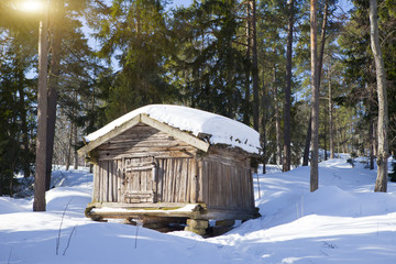 Wooden log hut in the wood in sunny winter day