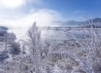 Winter landscape - frosty winter plants on the background of sunset and winter river cold mist, landscape winter view