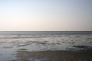 Wadden Sea in Denmark
