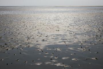 Sandy Ocean Floor