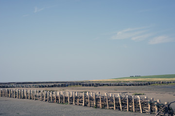 Low Tide at Mando