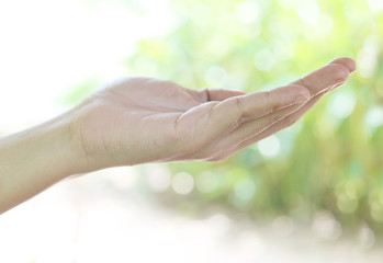 The female hand on a green background reaches for something