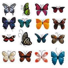 Butterfly icons set. Cartoon illustration of 16 butterfly vector icons for web