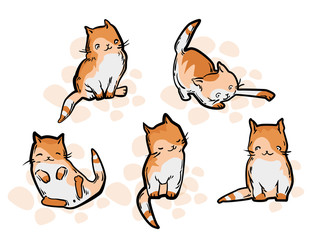 Cute cat in funny cartoon style