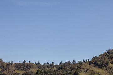 Hill Ridge