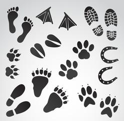 Human and animal footprints vector icon set.