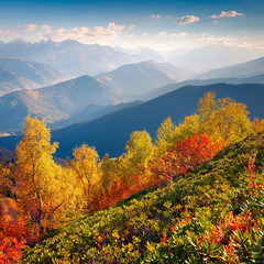 Wonderful morning light in the Caucasus mountains