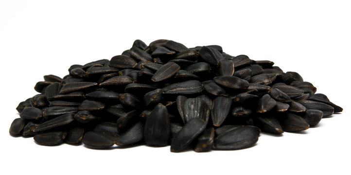 sunflower seed isolated on white