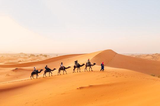 Camelcade on sand dune at desert