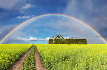 Wall Mural - Rainbow over field