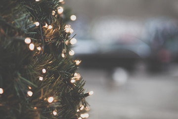 Close-up of fairy lights on a christmas tree