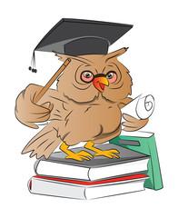 Smart Owl Graduate, illustration