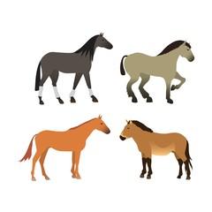 Horse vector isolated animal.