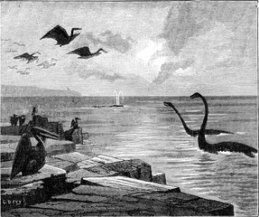 Instead of Paris, it was the sea. Pterodactyls with broad wings