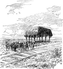 Travel M. de Lesseps. First station of the railway between Savan