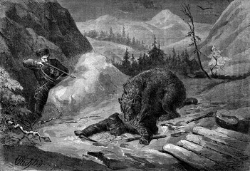 Death of Bear. His comrade visa animal to default shoulder, vint