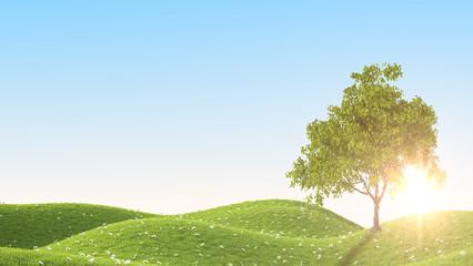 Green field. 3D rendering