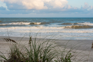 Gorgeous beach scene with waves and sea grasses.  North Carolina.