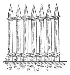 Palisade or Stakewall, vintage engraving.
