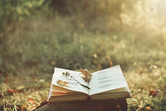 Vintage book of poetry outdoors