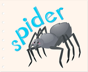 Animal word card with spider