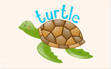Animal word card with turtle