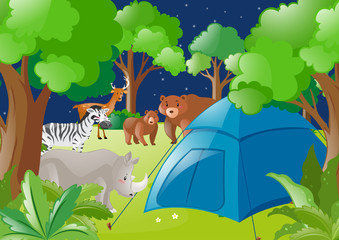 Scene with tent and wild animals in forest