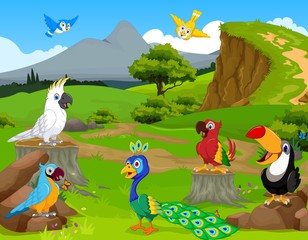 funny different kind of birds cartoon the jungle with landscape background