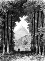 Hohensonne, vintage engraving.