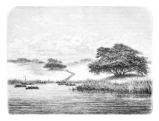 Crossing the Kwanza River, vintage engraving