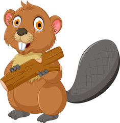cute beaver cartoon eating wood