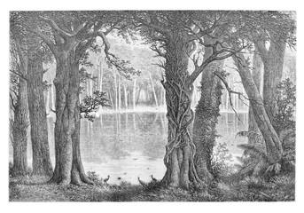 Lake Ligouri, vintage engraving