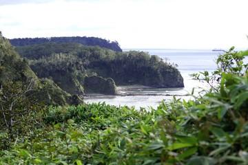 the nature of the island Kunashir