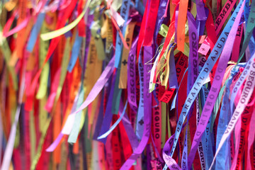 Foto op Plexiglas Paradijsvogel Friendship ribbons in Arraial D'Ajuda, Brazil