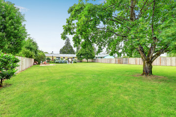 Large spacious backyard area, filled with green grass