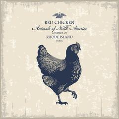 Курица Красная символ штата Род-Айленд, Америка, винтаж