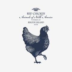 Курица Красная символ штата Род-Айленд, Америка