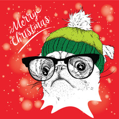 The christmas poster with the image pug portrait in winter hat. Vector illustration.