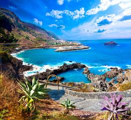 Cala y mar.Isla de Tenerife.Canarias.Paisaje marino y roca volcanica.Viajes y aventuras por la costa.Vegetación y acantilado bajo los rayos del sol
