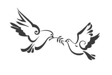search photos dove of peace