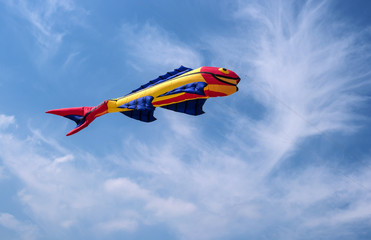 Kite in the form of fish.